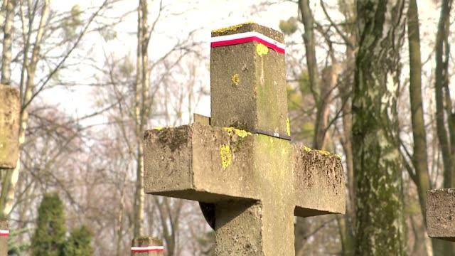 grave cross - 地衣類点の映像素材/bロール