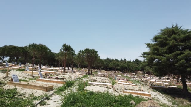 grave sites of coronavirus victims are seen at a designated burial site inside kilyos cemetery on may 16 2020 in istanbul turkey with 16 million... - 墓碑点の映像素材/bロール