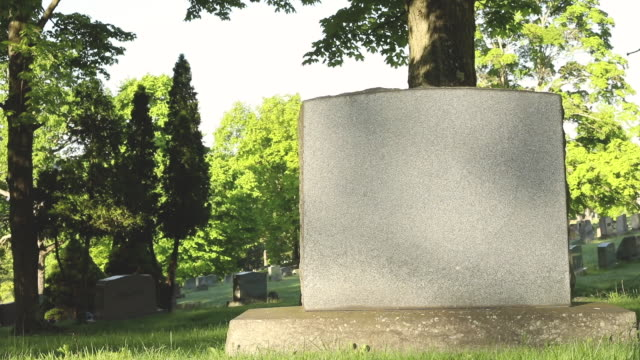 grave visitor - gravestone stock videos & royalty-free footage