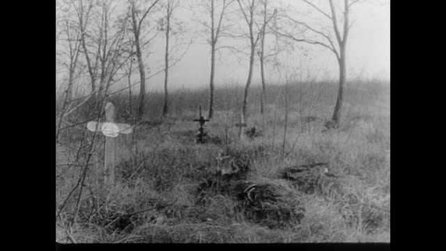 vidéos et rushes de graves in hungary woods, marked with wooden crosses - croix religieuse