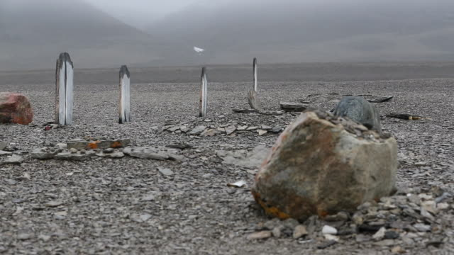 graves on beechy island from franklin expedition - buried stock videos & royalty-free footage