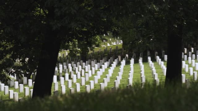 ms gravestones at arlington national cemetery from wilson drive, arlington, virginia, usa - アーリントン点の映像素材/bロール