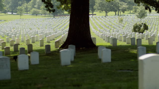 ms pan gravestones at arlington national cemetery, section 33, arlington, virginia, usa - arlington national cemetery stock videos and b-roll footage