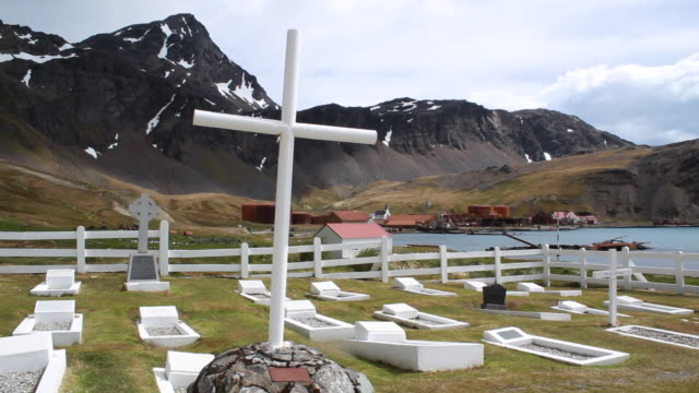 tilt graveyard in the mountains, grytviken cemetery, grytviken, south georgia and the south sandwich islands - ernest shackleton stock videos & royalty-free footage