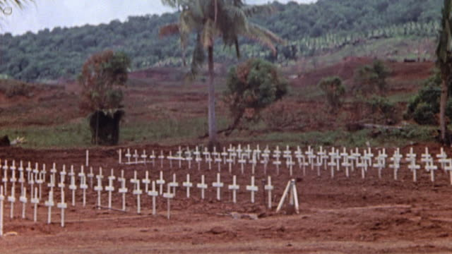 ha graveyard with rows of crosses beneath swaying palm trees / guam mariana islands - guam stock videos & royalty-free footage