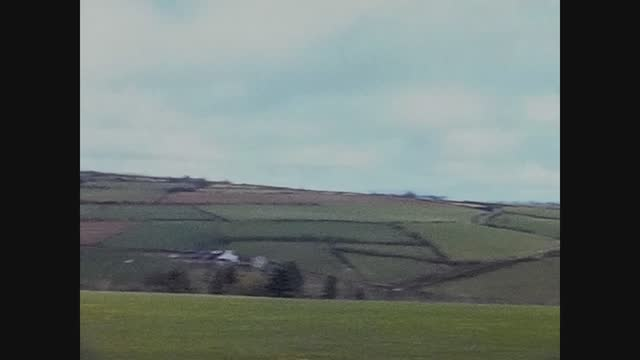 grazing cows in wales - pasture stock videos & royalty-free footage