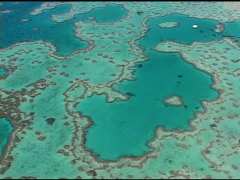 vídeos y material grabado en eventos de stock de gran barrera de coral - vista marina