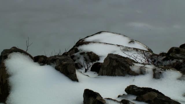 great falls park maryland shot 3 - kvist bildbanksvideor och videomaterial från bakom kulisserna