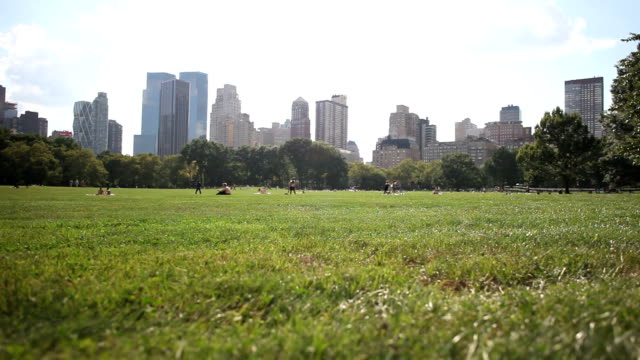 great lawn, central park nyc - great lawn stock videos and b-roll footage