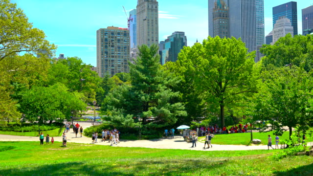great lawn in central park - natural parkland stock videos & royalty-free footage