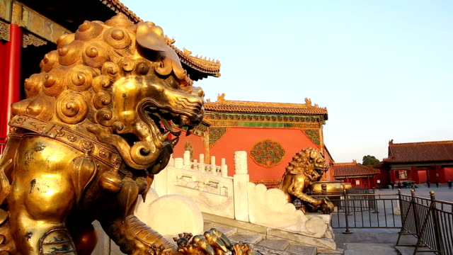 great lion statues in forbidden city, beijing, china. - animal representation stock videos & royalty-free footage