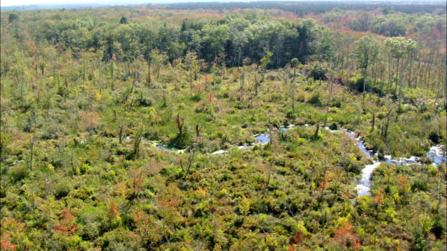 Great Swamp Wildlife Reservation  - Aerial View - Rhode Island, Washington County, United States