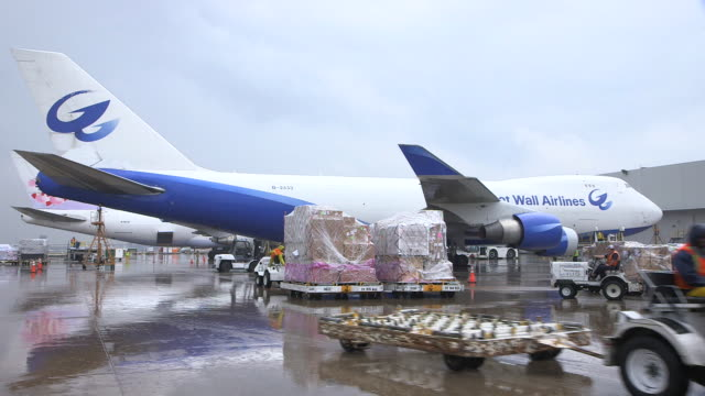 WS Great Wall Airlines cargo plane (Boeing 747-400F)  on rain-slicked tarmac with trucks moving cargo in foreground/DFW International Airport, Dallas-Fort Worth, Texas, USA