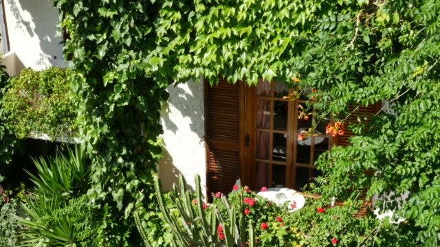 greece crete a door surrounded by ivy - shutter stock videos & royalty-free footage