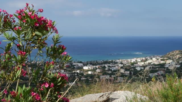 vidéos et rushes de greece crete coast framed with oleander - grèce