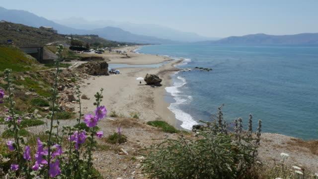 Greece Crete north coast beach with hollyhocks