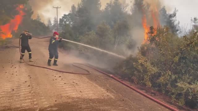 greece has been battling wildfires across the country on the eighth day of blazes that have spiraled into the evacuation of thousands of people from... - greece stock videos & royalty-free footage