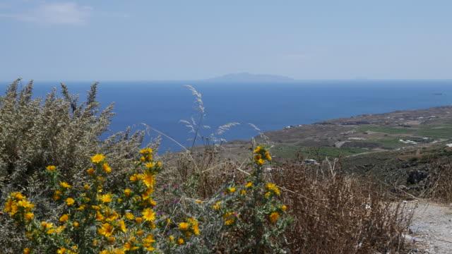 vidéos et rushes de greece santorini flowers and coast - grèce