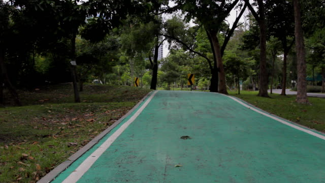 green a cycling path in the park - footpath stock videos & royalty-free footage