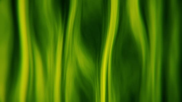 Green Abstract Wavy Backgrounds