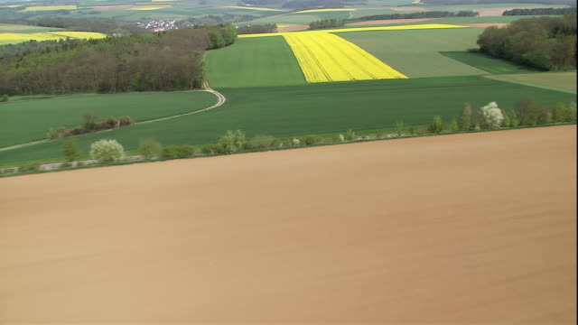 green and yellow rapeseed fields cover the countryside near bad mergentheim, germany. - oilseed rape stock videos & royalty-free footage