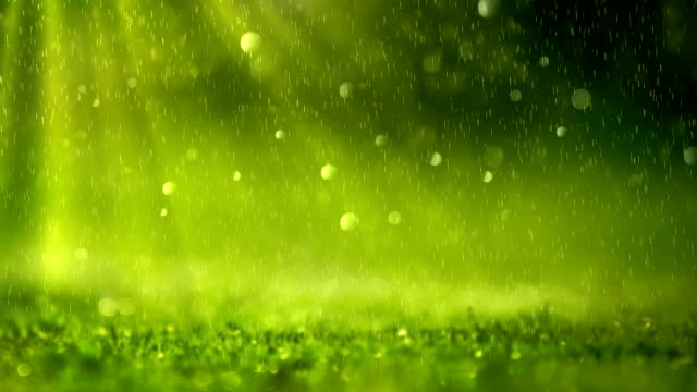 green background (loopable) - rain stock videos & royalty-free footage