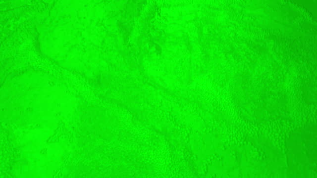 green bubbling water-loopable - oozing stock videos & royalty-free footage