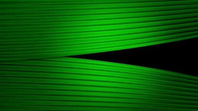 vídeos de stock, filmes e b-roll de cortinas de verde (formato retrato), abrindo e fechando (com canal alfa) - espetáculos de variedade