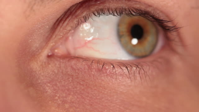 CU Green eye blinking iris / Sao Paulo, Brazil