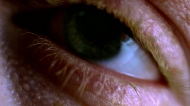 green eye macro 2 - cornea stock videos and b-roll footage