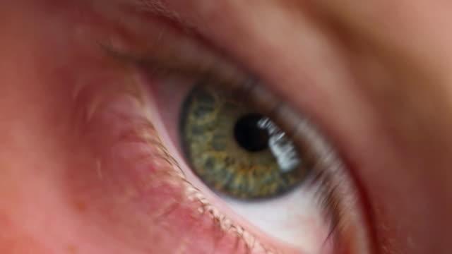 vídeos de stock, filmes e b-roll de olhos verdes - olhos verdes