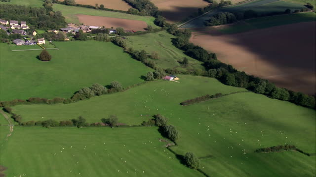 Green farm fields cover the countryside. Available in HD.