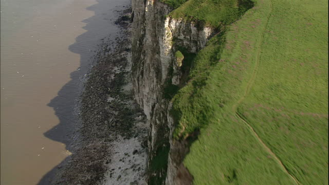 green farm fields cover the tops of the bempton cliffs in yorkshire, england. - ベンプトン点の映像素材/bロール