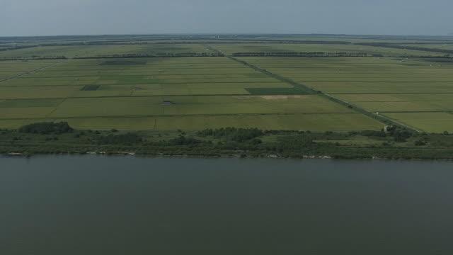 aerial, green farmland in ogata, akita, japan - polder stock videos and b-roll footage