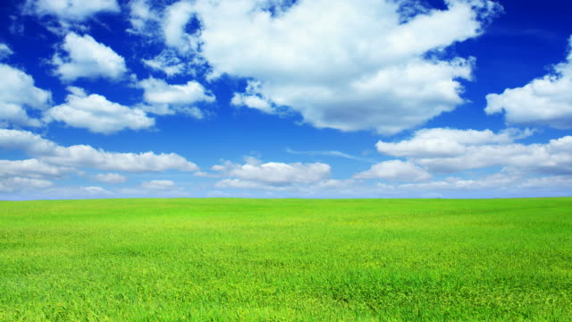 green field and blue sky-hd - blue stock videos & royalty-free footage