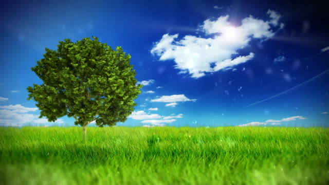 grüne feld über blauen clear sky - light natural phenomenon stock-videos und b-roll-filmmaterial