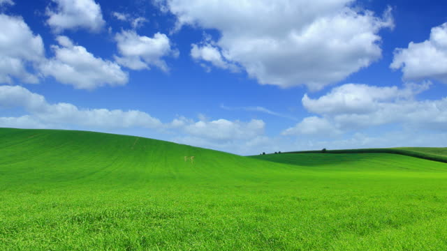 green field time lapse-hq 1080p - hill stock videos & royalty-free footage