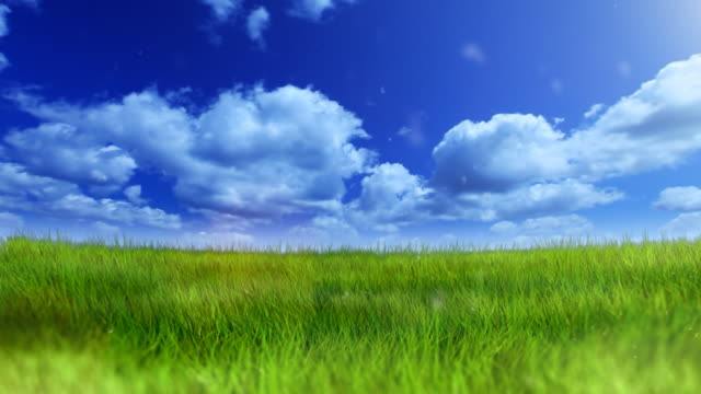 green field under blue sky - panoramic stock videos & royalty-free footage
