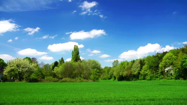 crane down: green field - crane shot stock videos & royalty-free footage