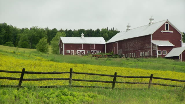 WS PAN Green field with fence and large barn / Morristown, Vermont, USA
