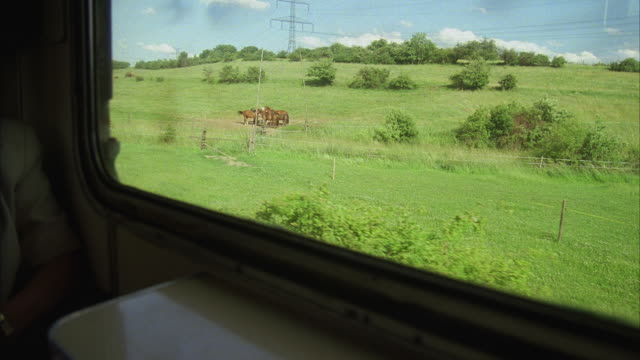 POV Green fields and horses seen through window of moving train