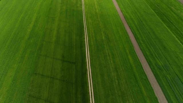 Grüne Felder geteilt durch Landstraße. Luftbild