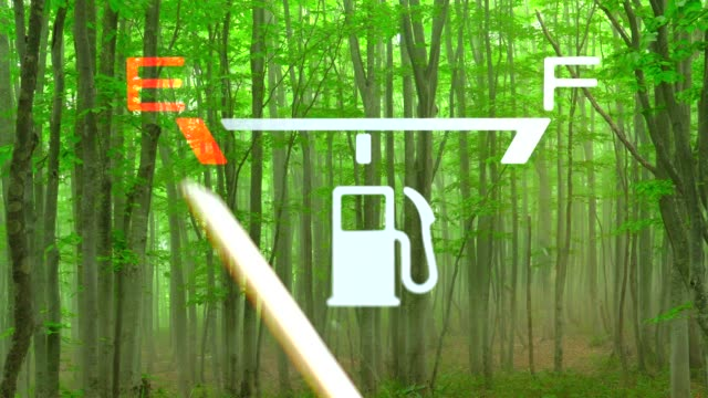 Green forest with Fuel Gauge -  E to F