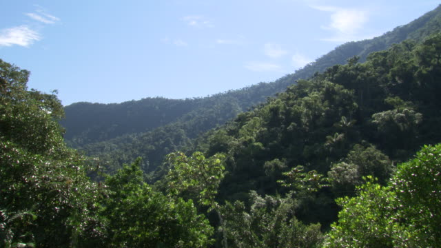 Green forested hills with blue sky, Sierra Nevada, Colombia