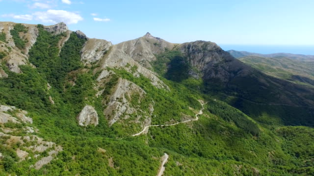 AERIAL: Green forests with lush foliage on mountain hills in sunny summer day