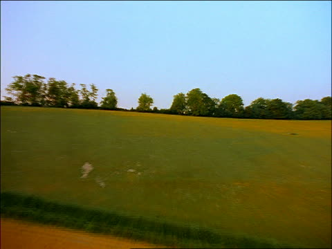 AERIAL  + green + golden hilly countryside with trees / Chiltern Hills, Oxfordshire, England