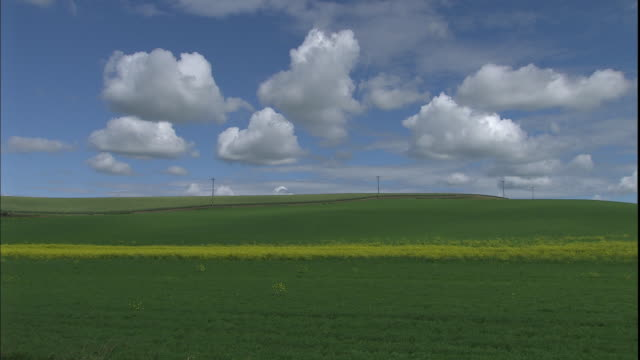 vídeos de stock, filmes e b-roll de green grass blankets rolling hills. - poste de telégrafo