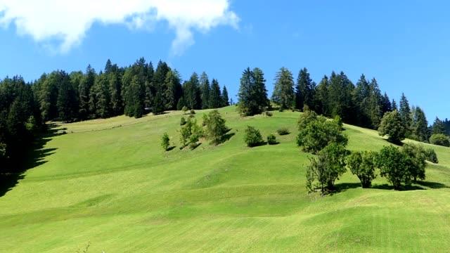 green grass on the hill - altopiano video stock e b–roll