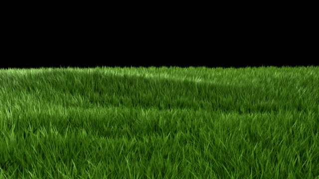 green grass - composite image stock videos & royalty-free footage