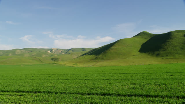 wide pan green grassy field with rolling green hills in background - なだらかな起伏のある地形点の映像素材/bロール